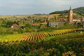 Vins du Jura