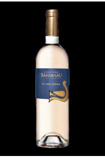 Côtes de Provence Et Cae Terra (Rosé)