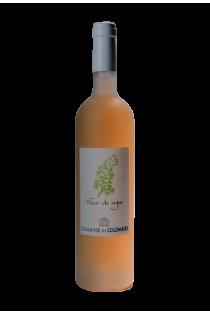 Ardèche - Fleur de Vigne